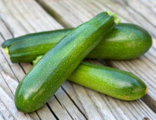 Le Zucchini